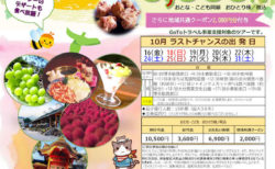 高級シャインマスカットと鶏の炭火焼食べ放題!【DI-O004-52】